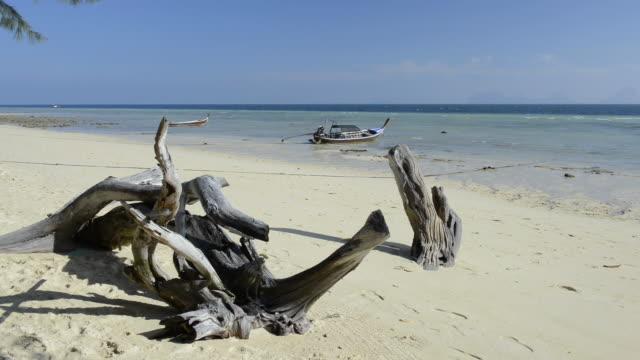 WS View of Driftwood and Long tail boat on sandy Beach, Marine National Park / Ko Hai, Krabi, Thailand