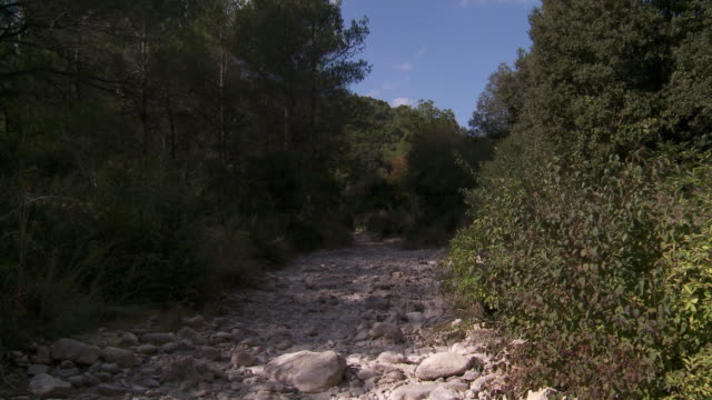 MS View of Dry rocky river bed  / Avignon, Provence, France