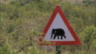 CU View of Elephant crossing sign / South Africa, Africa