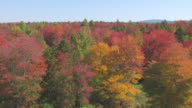 WS AERIAL POV View of fall forest area in small stream / Hillsborough County, New Hampshire, United States