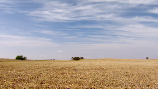 WS View of Farmland and sky / Wycheproof, Victoria, Australia