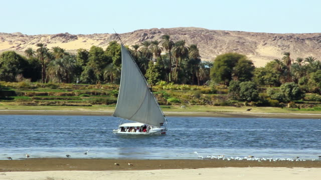 MS PAN View of Felucca moving across water and behind sand bank and in front of desert with palms / Aswan, Egypt