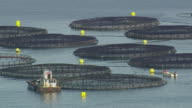 WS AERIAL DS View of Fish farm / Maine, United States