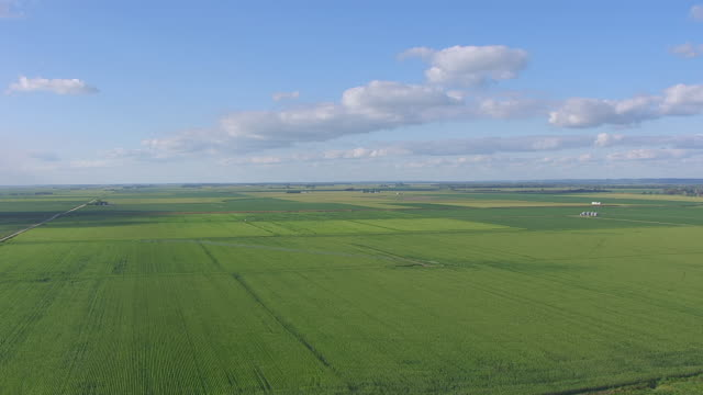 WS AERIAL View of Flat green farms / Nebraska, United States