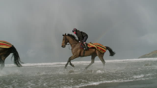 WS TS View of four horses and riders moving at speed in shallows along beach / Pembrokeshire, Wales, United Kingdom