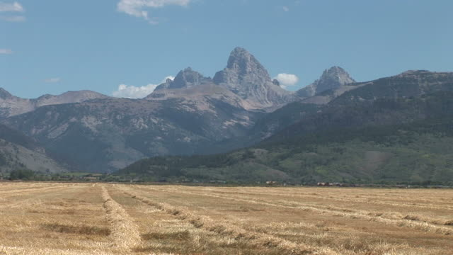 View of Grand Teton Mountains from grass fields in United States