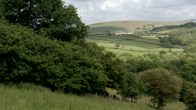WS PAN View of grass field near mountains / Powys, Wales