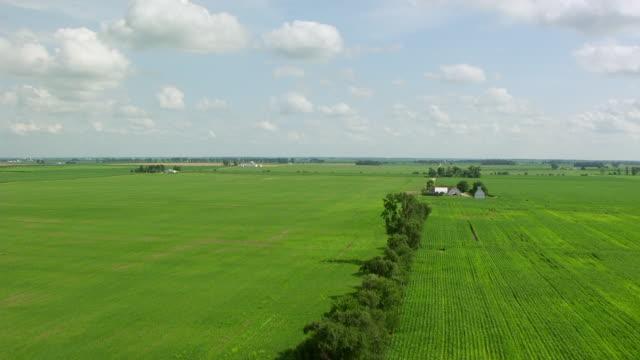 WS AERIAL POV View of green farmland / White County, Indiana, United States
