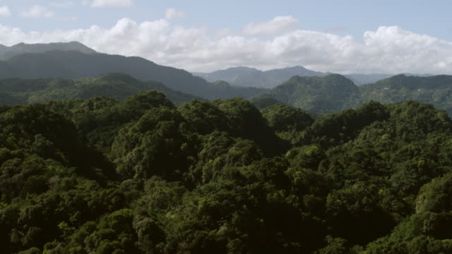 WS TU AERIAL POV View of green mogote peaks in south Arecibo region / Arecibo, Puerto Rico, United States
