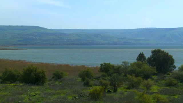 WS PAN View of green pasture with bank of ocean / Galilee, Israel