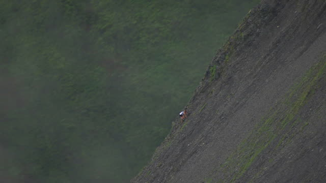 WS AERIAL View of group of racers sitting on side of mountain as another person climbs up mountain during Mount Marathon Race / Seward, Alaska, United States