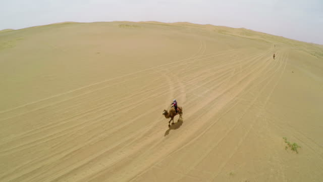 WS AERIAL View of herdsmen ride camel in Tengger Desert/Alashan, Inner Mongolia,China.