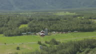 MS AERIAL ZO View of horses at farm in Mat Su Valley with mountains in distance / Alaska, United States