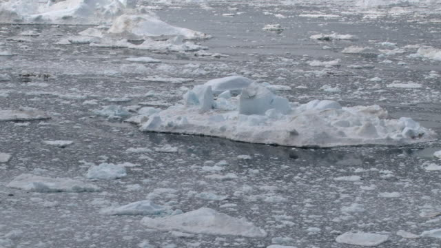 WS View of Icebergs and ice moving with currents in different directions / Ilulissat, Qaasuitsup, Greenland