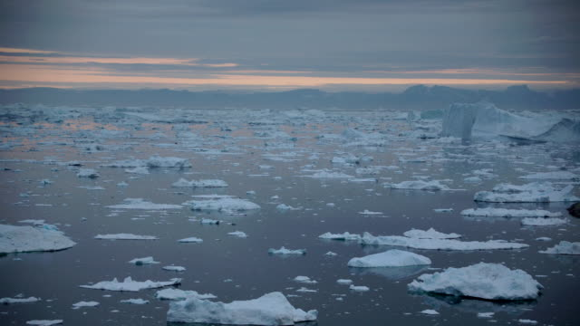 WS T/L View of icebergs moving in icy water at sunset / Ilulissat, Greenland