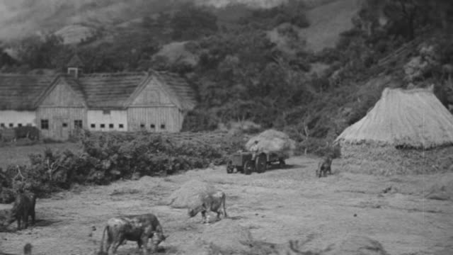 WS PAN View of Japanese farm country, small thatched huts and livestock (Miniature)