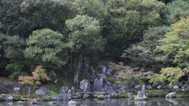 WS View of japanese garden / Arashiyama, Kyoto, Japan