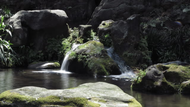 T/L View of Japanese garden with waterfall