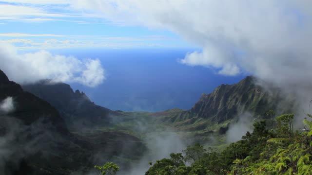 WS View of Kalalau valley from Puu O Kila while Napali coast in background / Waimea, Kalalau Valley, The Kauai Island, Hawaii, USA