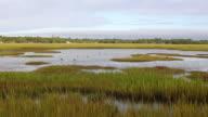 WS PAN View of landscape of marsh / St. Simons Island, Georgia, United States