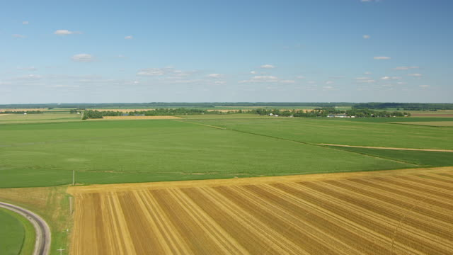 WS AERIAL POV View of large landscape with green and yellow fields / Knox County, Vincennes, Indiana, United States