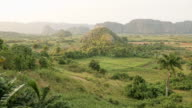 WS PAN View of Lush valley with Tobacco farms / Cuba