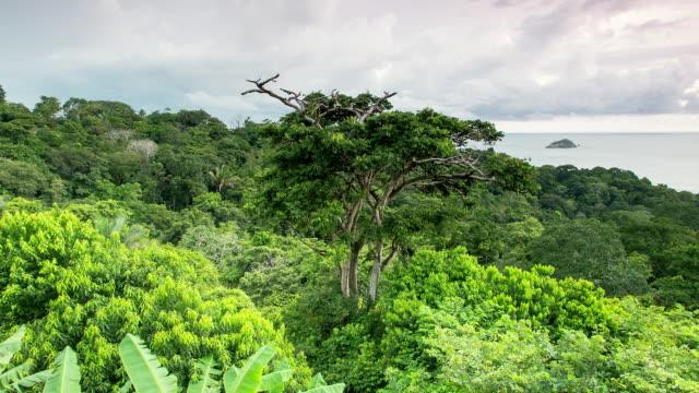 WS T/L View of manuel antonio bay and manuel antonio national park / Quepos, Manuel Antonio, Costa Rica