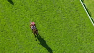 MS AERIAL SLO MO TS View of Melbourne cup horse racing / Melbourne, Victoria, Australia