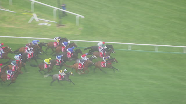 WS AERIAL ZI ZO TS View of Melbourne cup horse racing / Melbourne, Victoria, Australia
