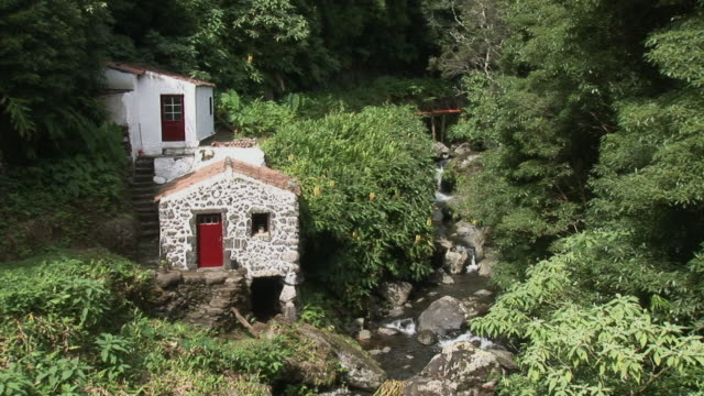 WS View of mill next to small river amongst forest / Lomba, Flores Island, Azores, Portugal