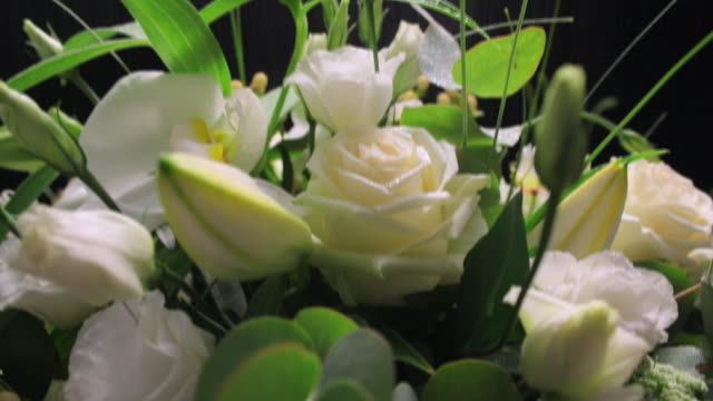 MS CU TU  View of Mixed bouquet of white flowers / London, United Kingdom