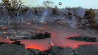 WS View of molten lava flowing through forest and burning vegetation / Kalapana, Hawaii, USA