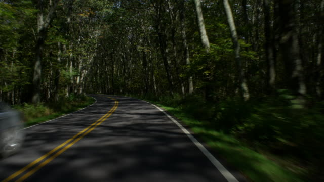 MS POV View of mountain forest on country road / Shenandoah National Park, Virginia, United States