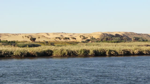 WS POV View of Nile river with palms and desert in background / Aswan, Egypt