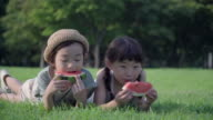 View of one boy and one girl eating watermelon on the lawn in summer at Seoulforest (the third largest park in Seoul city)