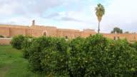 WS View of Palace El Baadi next to small trees / Marrakesh, Morocco
