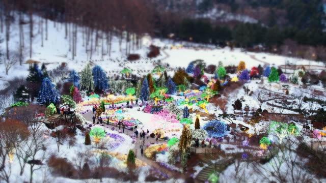 WS T/L View of People at Achimgoyo Arboretum on Christmas Holiday / Gapyeong, Kyonggi-Do Province, South Korea