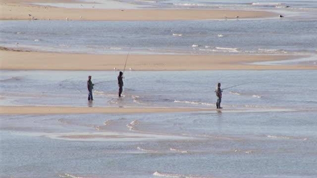 WS AERIAL SLO MO ZO View of people fishing on beach / Adelaide, South Australia, Australia