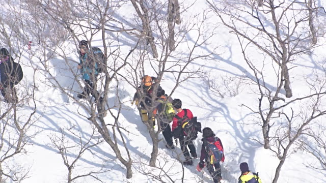 WS AERIAL ZO View of People hiking at Daegwallyeong (mountain pass in Taebaek Mountains of eastern South Korea) covered snow / Gangneung, Gangwon do, South Korea