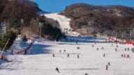 WS T/L View of People skiing in Pyeongchang (Host City of 2018 Winter Olympic Game) / Pyeongchanggun, Gangwon do, South Korea