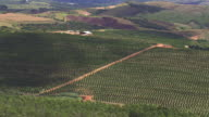 WS AERIAL View of Plantations / Minas, Gerais Brazil
