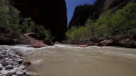 WS View of river flowing / Just outside Zion National Park, Utah, United States