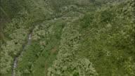WS POV AERIAL View of river through narrow valley / Hawaii, USA
