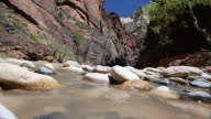 MS View of river water with flat stones / Zion National Park, Utah, United States