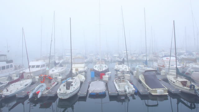 MS View of Sailboats in Mist at morning time / Redondo Beach, California, United States