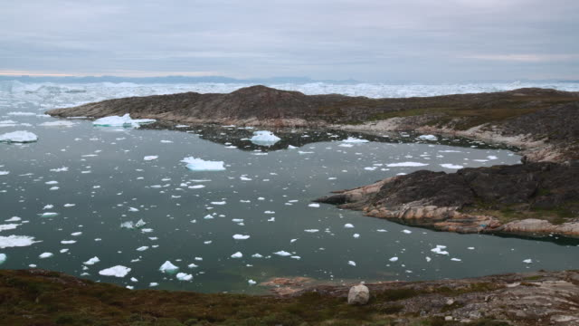 WS T/L View of shadows moving over icebergs in icy water / Ilulissat, Greenland