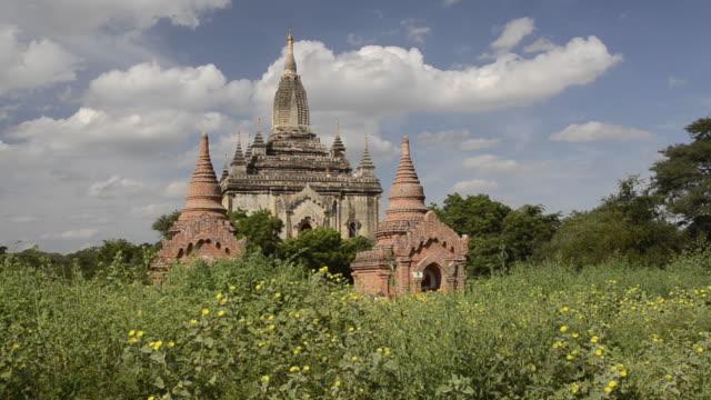 WS LA View of Shwegugyi Pagoda in flowering field / Bagan, Mandalay Division, Myanmar