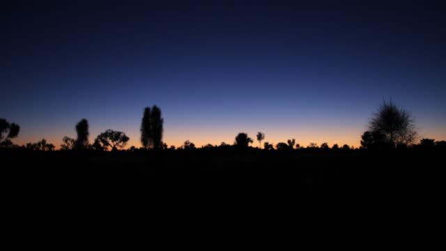 WS View of Silhouette of skyline at dusk / Northern Territory, Australia