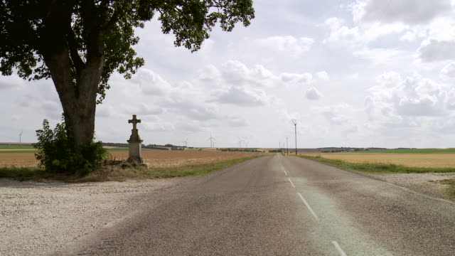 MS View of Single tree and roadside cross in rural area / Beaune, Burgundy, France