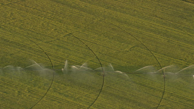 WS AERIAL ZI TS View of spraying water at farm field/ Germany